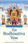 Meditation Class:  Learning to be a Bodhisattva @ ONLINE EVENT | Atlantic Beach | Florida | United States