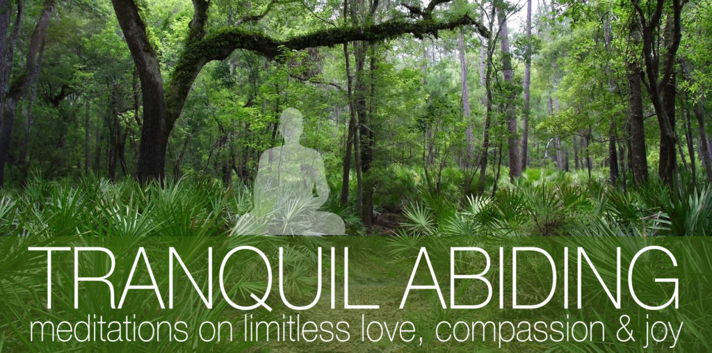 Away Retreat: Tranquil Abiding: limitless love, compassion, joy @ Gainesville Retreat Center | Gainesville | Florida | United States