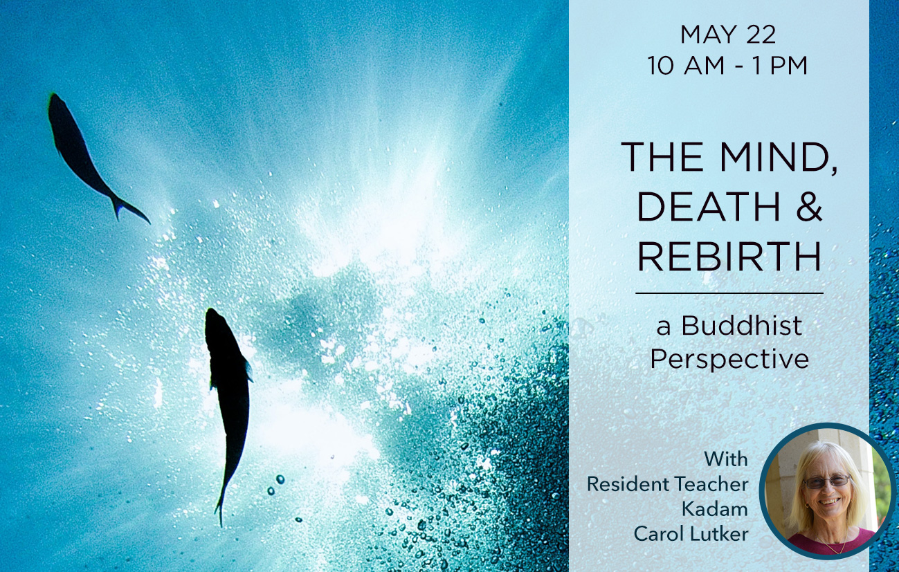 The Mind, Death and Rebirth